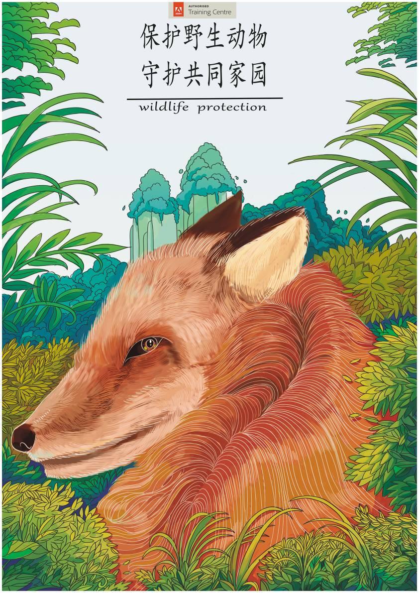 保护野生动物  守护共同家园